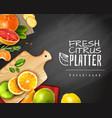 citrus fruit background vector image vector image