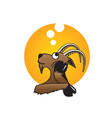 goat day dreaming vector image