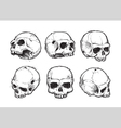 Skulls Hand Drawn Set 1 vector image vector image