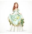 Beautiful princess with brown hair vector image vector image