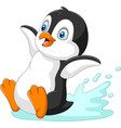 cartoon penguin sliding on water vector image vector image
