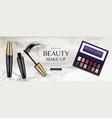 cosmetic eye shadow palette mascara tubes brush vector image