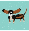 Dog Basset Hound under falling snow on the blue vector image vector image