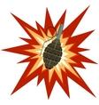 Fragmentation grenade vector image vector image
