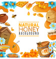 honey cartoon frame vector image vector image