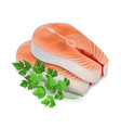 realistic detailed 3d steak of red fish and raw vector image vector image