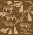 seamless pattern with different big spotted cats vector image vector image