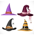 Witch hats with straps and buckles set isolated on vector image vector image