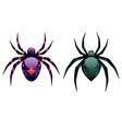Cartoon Spider vector image