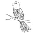 parrot mandala icon vector image