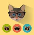 cat portrait with flat design vector image vector image