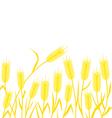 corn background vector image