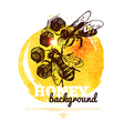 Honey banner with hand drawn sketch and watercolor vector image vector image