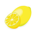 lemon isolated on a white background vector image vector image