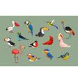 Popular Birds Icon Set vector image