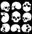 skull seamless vector image vector image