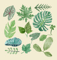 botanical clipart set of green leaves tropical vector image vector image