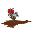 dirty fly cartoon character design isolated on vector image vector image
