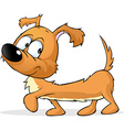merry dachshund - cute dog isolated on white vector image vector image