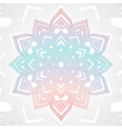 outline abstract color mandala vector image vector image