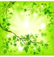 Spring light background vector image vector image