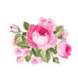 the blooming rose vector image vector image