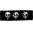Three Human Skulls vector image vector image