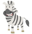 african zebra cartoon animal character vector image