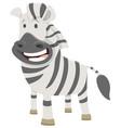 african zebra cartoon animal character vector image vector image