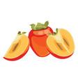 cartoon persimmon fresh vitamin fruit juicy vector image