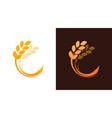 ear wheat logotype for bakery or harvest farm vector image vector image