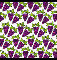 grapes pattern fresh fruit drawing icon vector image