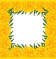 marigold flower - tagetes border vector image