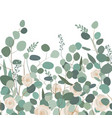 seamless pattern with eucalyptus branches and vector image