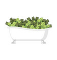 bath of money isolated bath full cash vector image vector image