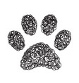 handdrawn paw doodle icon vector image