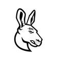 head an angry kangaroo side view mascot black vector image vector image
