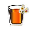 herbal tea with fresh chamomile flowers isolated vector image