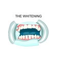 in teeth whitening dentistry vector image