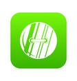 round sewn button icon digital green vector image