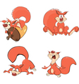 Set of squirrels cartoon vector image vector image