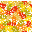 autumn seamless pattern with hand drawn dog rose vector image vector image