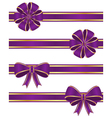 Purple ribbons vector image