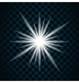 sparkle light star 11 vector image vector image