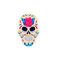 spooky white sugar skull painted with red rose vector image