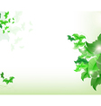 Environmental Background with green leaf vector image