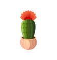 green chin cactus with red flower in round pot vector image
