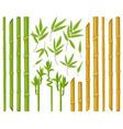cartoon bamboo plants asian bamboo stems stalks vector image