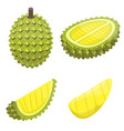 durian icons set isometric style vector image vector image
