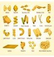 Italian pasta poster of assortment macaroni vector image vector image